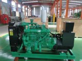 Bester Lebendmasse-Gas-Generator-Preis-hölzerner Tabletten-Generator-hölzerner Gas-Generator für Verkauf