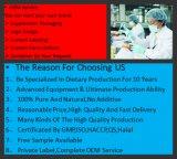 건강식 GMP는 간장 레시틴 Softgel 의 콩 초본 추출, 증명된 GMP를 증명했다