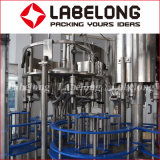 3 in 1 Monoblock, 5L het Vullen van het Mineraalwater Machines