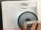 ネオジムの磁石停止磁石の検索の磁石F300*2 F300X2