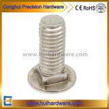 Uitstekende kwaliteit 316 de Bout DIN603 van het Vervoer van het Roestvrij staal