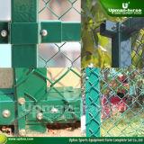 Ограждать ячеистой сети спорта гальванизированный судом стальной (SF-1000)