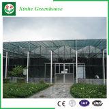 농업 광고 방송을%s 유리제 빈 강화 유리 소형 녹색 집