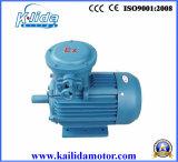взрывно мотор индукции доказательства 380V электрический
