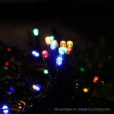 Lumière extérieure colorée actionnée solaire de chaîne de caractères de Noël de 100 DEL