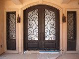 Portes d'entrée superbes de fer de qualité avec l'entrée principale de Sidelites