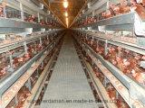 極度の牧夫の肉焼き器鶏の小屋のための自動養鶏場装置