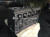 زنجير 3116 أسطوانة قالب محرّك قالب 1495401 قطع 3116 صاحب مصنع