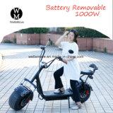 Motociclo elettrico delle rotelle elettriche adulte senza spazzola del motorino 2 della bici 800W della città
