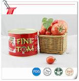 Feines Tom eingemachtes Tomatenkonzentrat von 70g, von 210g und von 400g