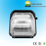 Lampe d'induction d'éclairage économes en énergie Pack d'éclairage mural (lg0557)