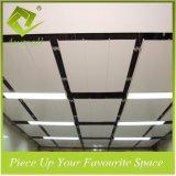 粉のコーティング300mmwのアルミニウム装飾的なストリップの天井のタイル
