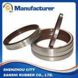 NBR Gummiöldichtungen mit Metallrahmen für hydraulisches mechanisches
