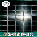 Geltendes kundenspezifisches starkes galvanisiertes quadratisches Stahlrohr der Wand-UnterstützungsASTM A53