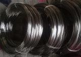 Premier fil d'acier inoxydable de premier fournisseur