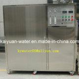 RO de Machine van de Filter van het Water van het membraan voor Drinkende Industrie 1000lph