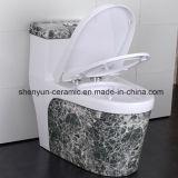 Ceramic Toilet One-Piece Toilet Color Wc com textura de pedra estilo popular (A-009S)