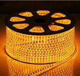 Indicatore luminoso luminoso eccellente della corda di RoHS 220V/127V SMD5050 LED del Ce