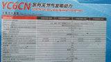 природный газ генератора газа 650kVA 520kw Yuchai, двигатель Biogas, CNG