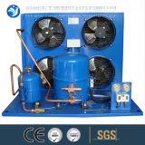 Unidade de condensação do quarto frio do tipo de Copeland para o armazenamento frio
