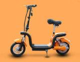 350W 모터를 가진 전기 자전거 접히는 E 자전거