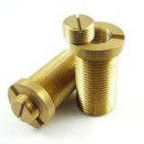 中国の製造業者OEM/ODMの真鍮の機械化の部品