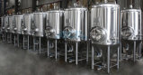 Gärungsbehälter/Minibrauerei-Gerät/kleines Bier-Brauerei-Gerät (ACE-FJG-AC)