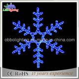 Het Opvlammende Licht van Kerstmis op het LEIDENE Grote Licht van de Sneeuwvlok voor Nacht