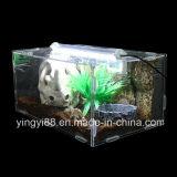 Изготовленный на заказ среда обитания Acrylic Reptile Terrarium, Ideal для Small Reptiles
