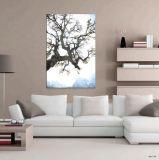 El precio de fábrica de arte pintura al óleo de la foto desnuda