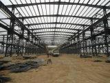 기업 플랜트를 위한 무거운 강철 구조물 작업장