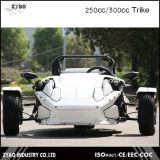 De Open tweepersoonsauto Ztr die Trike van de EEG 250cc 3wheels ATV Trike met Motor Zongshen rennen