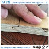 18mm de espesor de madera contrachapada de ranura y lengüeta para planta de interior