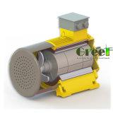 100 квт 30об/мин магнитного генератора, 3 фазы AC постоянного магнитного генератора, использование водных ресурсов ветра с низкой частотой вращения