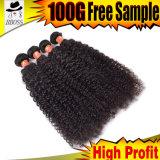 波9AのブラジルのバージンのRemyの人間の毛髪の/100巻き毛の%Humanの毛