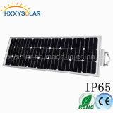 Luz solar integrada del jardín de la aleación de aluminio 100W