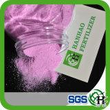 Fertilizzante solubile in acqua 17-17-17 NPK di 100%