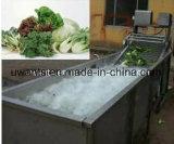 2017 nuove verdura e lavatrice professionali progettate della frutta