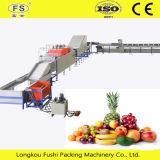 Fruta Fushi multifuncional Dispositivo de lavado de vegetales, frutas la clasificación de la máquina