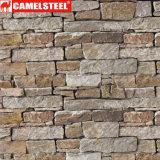 Cor do mármore/flor/a de madeira/do tijolo teste padrão revestiu a bobina de aço galvanizada PPGI/PPGL