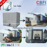 Fabricant de glace commercial à petite capacité en Chine