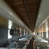 Système de chauffage Heated mis en cage de Chambre de poulet de cage de poulet