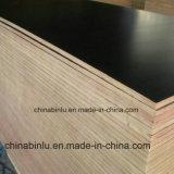 Material de construcción resistente al agua/dedo película articulados de madera contrachapada frente