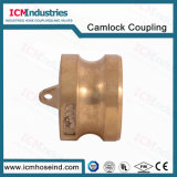 Type Dp Quick Connected Arm Camlock Fittings