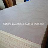 4*8FT Álamos Okoume básico para el uso de muebles de madera contrachapada