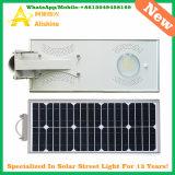 15W LEDのLiFePO4リチウム電池が付いている太陽庭の街灯