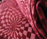 Tessuto di Chenille professionale del sofà della fabbrica per le decorazioni del sofà