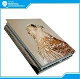 Livro de papel colorido com papel personalizado