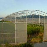 De industriële Serre van de Tunnel voor Groente/Vruchten/Sla