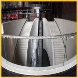 Lajes de mármore brancas de cristal chinesas populares para telhas do revestimento e da parede